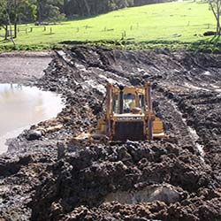 Marron farming myths and FAQ - Avoid sludge and muddy old pre-existing dams.